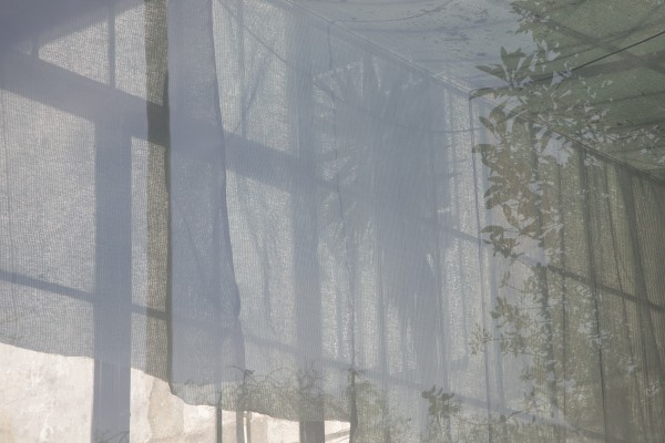 Artes visuais_Instalações_A TINTA ESBATE-SE EM FORMA DE ONDA_Carina Martins e Jez_ Site